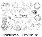 fruits and berries. set of... | Shutterstock .eps vector #1199305204