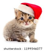 Stock photo kitten in a red santa claus hat isolated on white 1199546077