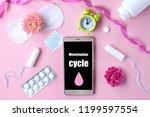 tampon  feminine  sanitary pads ...   Shutterstock . vector #1199597554