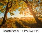 vivid autumn background. autumn ... | Shutterstock . vector #1199669644