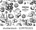 wild berry drawing. hand drawn... | Shutterstock .eps vector #1199701321