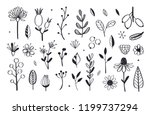 herbal tea and floral doodle... | Shutterstock .eps vector #1199737294