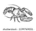 lobster sea animal engraving... | Shutterstock . vector #1199769031