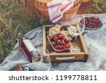 summer   picnic in the meadow.... | Shutterstock . vector #1199778811