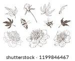 set of vector hand drawn...   Shutterstock .eps vector #1199846467