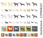 dog breeds cartoon icons in set ...   Shutterstock .eps vector #1199848147