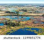 okavango delta  okavango...   Shutterstock . vector #1199851774