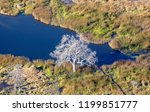 okavango delta  okavango...   Shutterstock . vector #1199851777