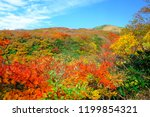 the mountain of beautiful... | Shutterstock . vector #1199854321