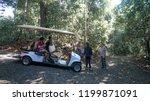 sandakan sabah  malaysia  ...   Shutterstock . vector #1199871091