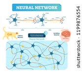 neural network vector... | Shutterstock .eps vector #1199876554