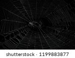 real spider web isolated on... | Shutterstock . vector #1199883877