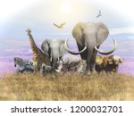 animals of africa and a... | Shutterstock . vector #1200032701