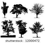 vector tree   Shutterstock .eps vector #12000472