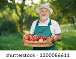 man with grey hair looking at... | Shutterstock . vector #1200086611
