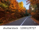 autumn road through forest | Shutterstock . vector #1200129727