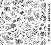 vector hand drawn herbs and... | Shutterstock .eps vector #1200182701