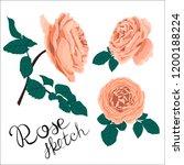 a set of flower parts.... | Shutterstock .eps vector #1200188224