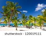 tropical beach  saona island ... | Shutterstock . vector #120019111