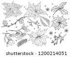 vector set of doodle hand drawn ... | Shutterstock .eps vector #1200214051