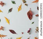 minimal autumn nature... | Shutterstock . vector #1200223531