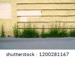 brick yellow wall | Shutterstock . vector #1200281167