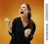 i won. winning success happy...   Shutterstock . vector #1200325951