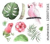 watercolor hand painted... | Shutterstock . vector #1200371161