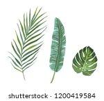 set of tropical plants leaves. | Shutterstock .eps vector #1200419584