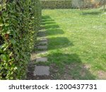 shadows of square shaped shrubs ... | Shutterstock . vector #1200437731