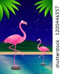 Pink Flamingos On The Pond...