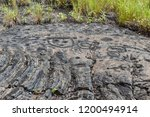 Small photo of Petroglyphs in lava rock at Pu'uloa along Chain of Craters road, in volcano National Park on the island of Hawaii. Carvings are 400-700 years old.