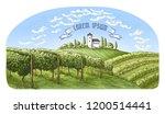 colorfull vine plantation hills ... | Shutterstock .eps vector #1200514441