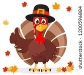 Turkey In Hat Shows Like On A...