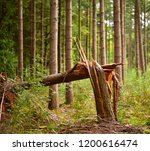 a broken tree after a storm in... | Shutterstock . vector #1200616474