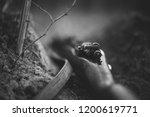 german military ammunition of... | Shutterstock . vector #1200619771