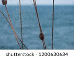 close up photo of trabucco la... | Shutterstock . vector #1200630634