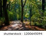 female jogger in autumn park   Shutterstock . vector #1200645094