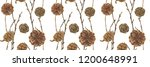 botanical watercolor. cones and ...   Shutterstock . vector #1200648991
