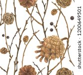 botanical watercolor. cones and ...   Shutterstock . vector #1200649501