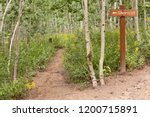 Small photo of Shortcut sign on a hike