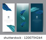 branding packaging tropical... | Shutterstock .eps vector #1200754264