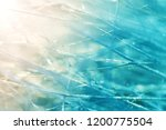 grass in the frost. frost on... | Shutterstock . vector #1200775504