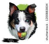 new zealand heading dog  poster ...   Shutterstock . vector #1200883834