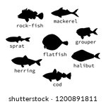 Stock vector vector set of black sea fish silhouettes with text collection of isolated on white background 1200891811