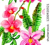 exotic flowers and leaves in... | Shutterstock . vector #1200920521