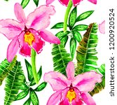 exotic flowers and leaves in... | Shutterstock . vector #1200920524