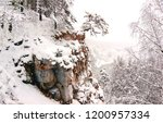 Winter Snow Mountain Forest...