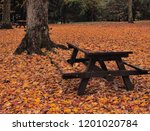 closed for the season... | Shutterstock . vector #1201020784
