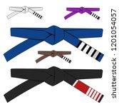 brazilian jiu jitsu adult belts ...   Shutterstock .eps vector #1201054057